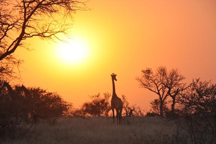 赞比亚旅游资源丰富.jpg